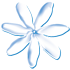 Air Tahiti Nui staff travel loads